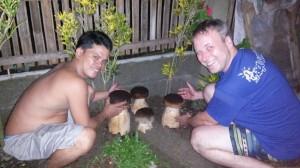 Riesen Pilz Philippinen