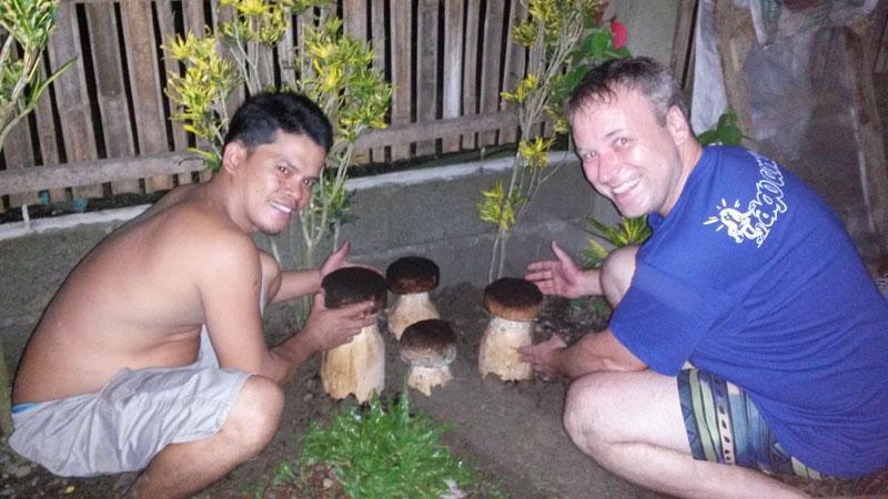 Lieblings Pilzzucht – Pilze selber züchten – Pilzanbau für Haus und Garten @UD_88