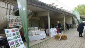 PilzJäger Pflanzen-Raritätenmarkt Botanischer Garten Graz